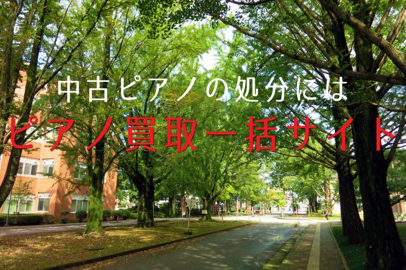 栃木県宇都宮市の中古ピアノ 処分なら、まず買取査定をしてみよう